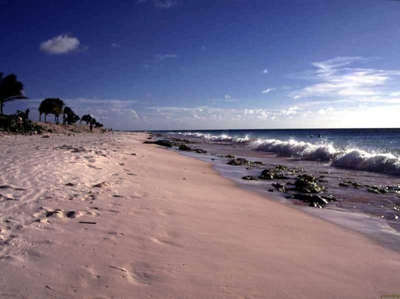 Bonaire Cd